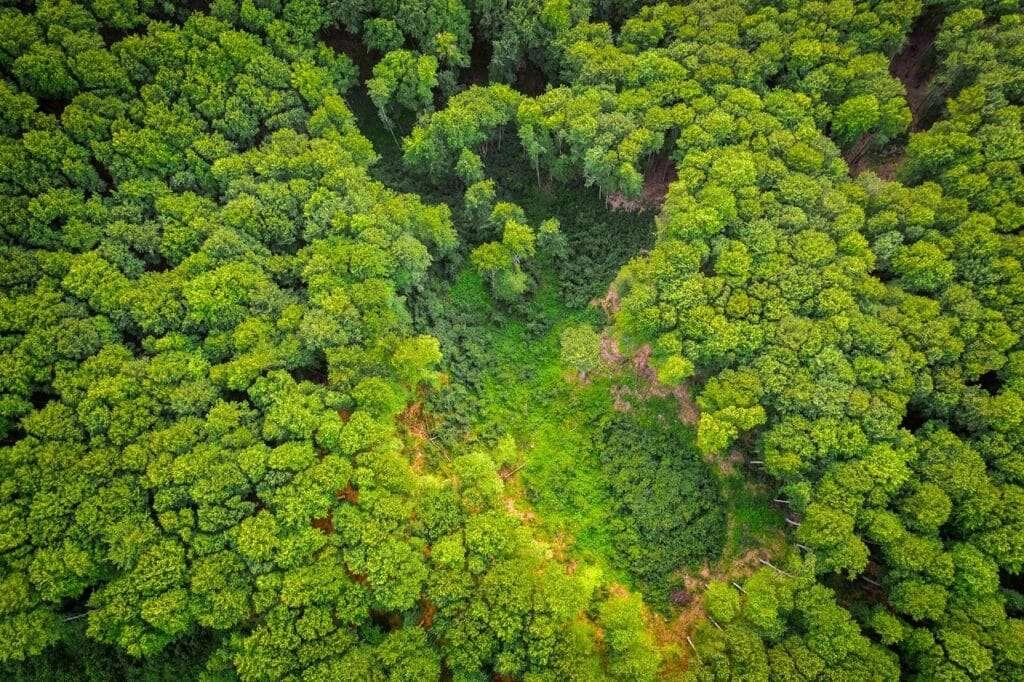 recursos naturales unasur