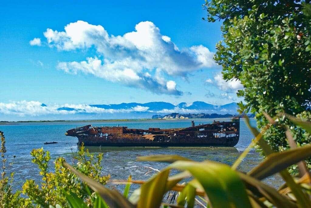 reglas hamburgo transporte maritimo